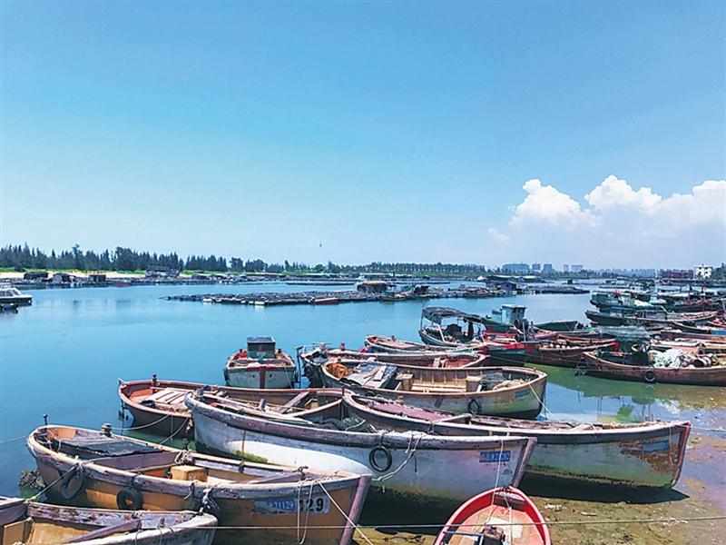 28、澄迈东水港 海南日报记者 于伟慧 摄.jpg